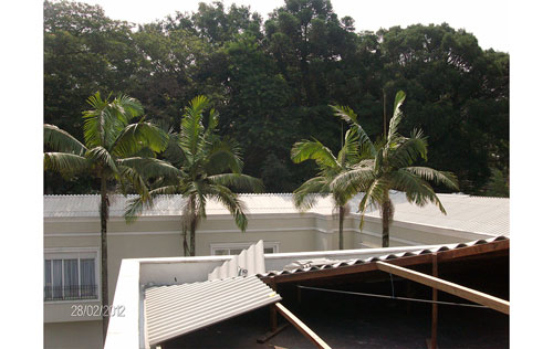 Telhados e coberturas no Bosque da Saúde
